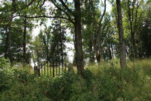 Mažių kaimo evangelikų liuteronų senosios kapinės